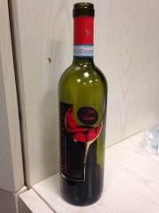 bottiglia 1
