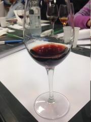 Barolo Chinato - Terredavino bicchiere 1