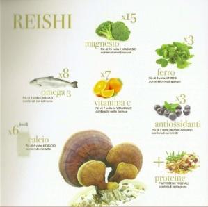 Cosa contiene il Reishi
