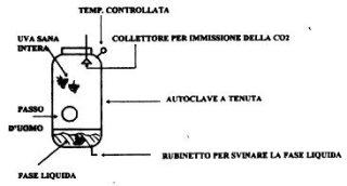 novello autoclave