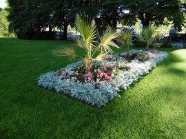 35 - Giardino botanico a Grunellorka